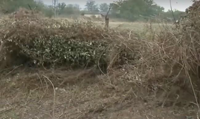 Премахват 10 т отровни пестициди в старозагорско село