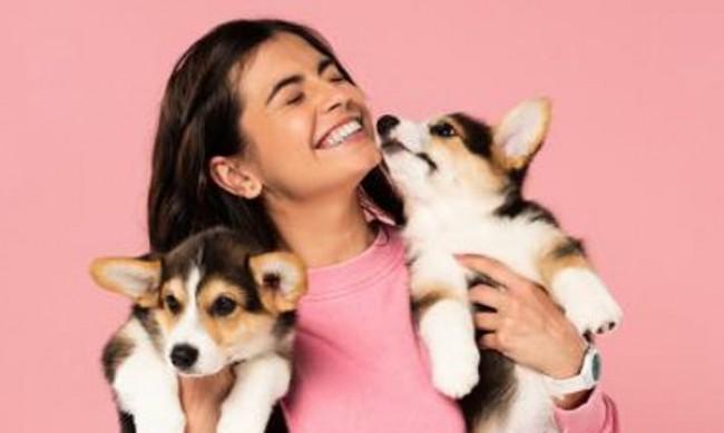 Да се погрижим за духа на кучето по време на изолация