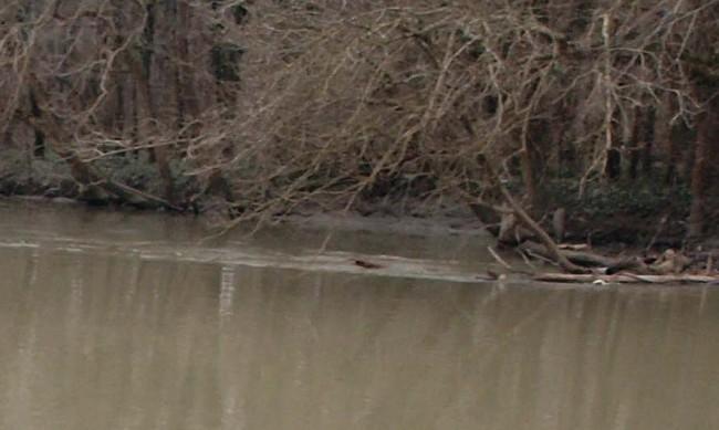 55-годишен мъж се удави в язовир Камчия