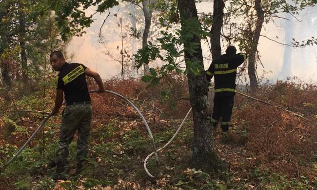 Пожарът край Девин е потушен