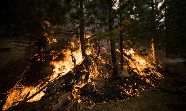 Расте броят на жертвите на пожарите в САЩ