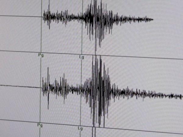 Леко земетресение с магнитуд 3.1 по Рихтер е регистрирано тази