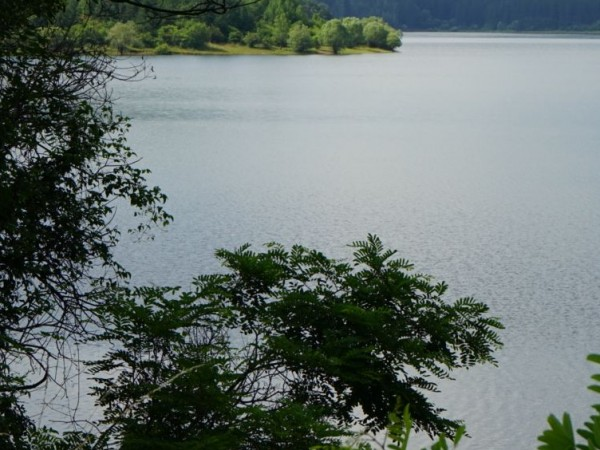 Варна и Бургас не са заплашени от воден режим, дори