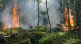 Повишена опасност от пожар в 7 области на страната