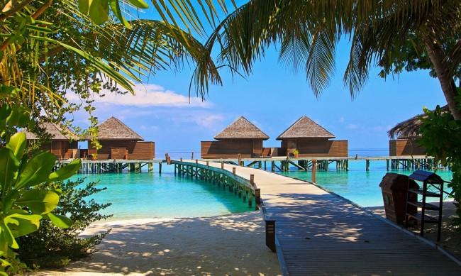 Хоумофис от Малдивите? Чудесно, но срещу $23 000