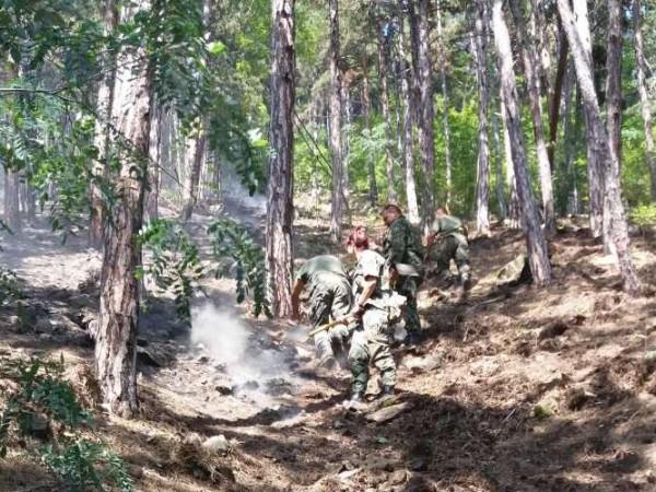 13 пожара са гасили екипи на противопожарните звена в Силистренска