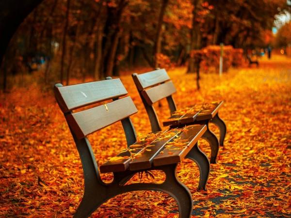 На 22 септември в 16:31 настъпва астрономическата есен. Температурите днес