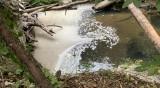 От Helpbook: Реката до с. Борино мирише на отходен канал, а до нея - сметище