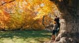 Любовна есен чака 4 зодии!
