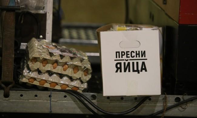 Младежи в Пловдив нападнали минувачи с яйца