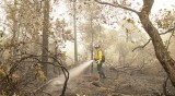 Пожар в Северна Калифорния взе три жертви