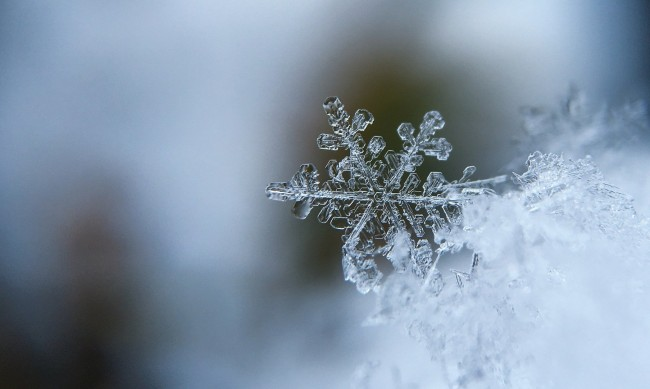 Без валежи от сняг през първите 10 дни на ноември