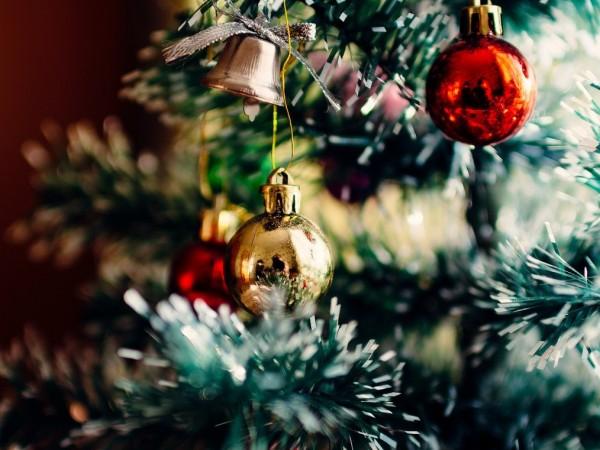 Коледните изненади могат да бъдат не само приятни. Ето защо