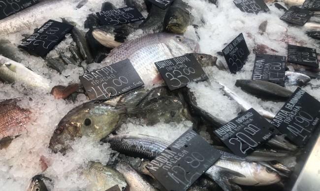 БАБХ проверява рибните борси и магазини от утре до Никулден