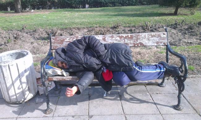 Подслон за бездомните... но след PCR за тяхна сметка
