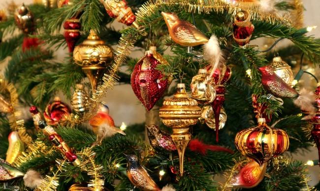 Коледа с елхи на изплащане или под наем за седмици