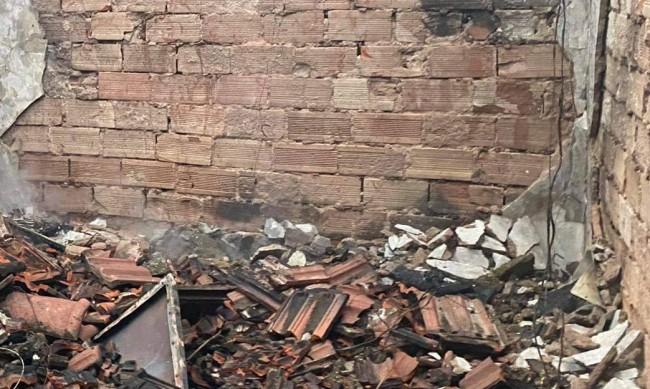 Животни загинаха при пожар край Плевен