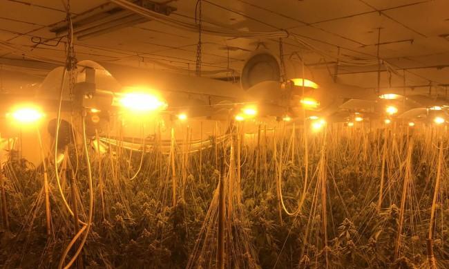Разкриха лаборатория за наркотици в Бойчиновци