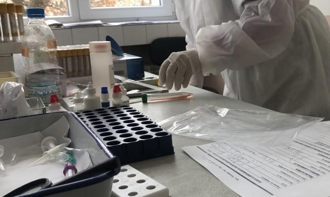 482 са новите случаи на коронавирус у нас, 4600 са излекувани за денонощието