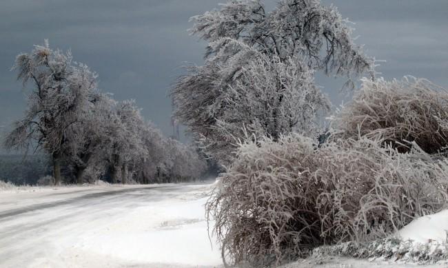 Задава се зима! Сняг и студ в цялата страна от вторник