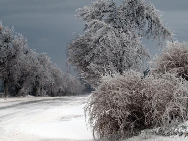 От вторник зимата ще напомни за себе си, а лошото
