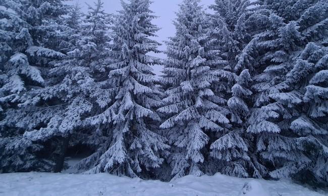 Двама починали от студ открити в планина в Хърватия