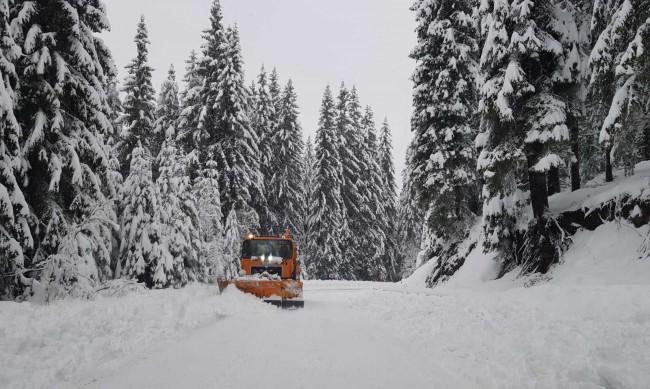 Две катастрофи са станали на пътя Монтана - Берковица