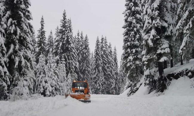 Кои са най-честите причини за катастрофи при зимни условия?