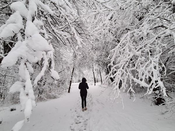 Днешният 13-и февруари предстои да бъде студен ден. Дори в