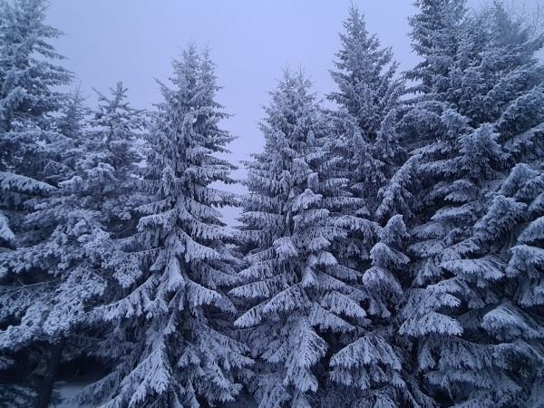 Изключително студено ще бъде времето на празничния 14 февруари, когато
