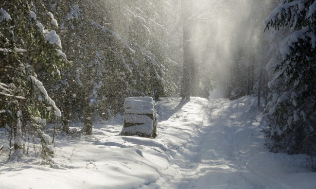 Поляците потеглиха към ски курортите в страната