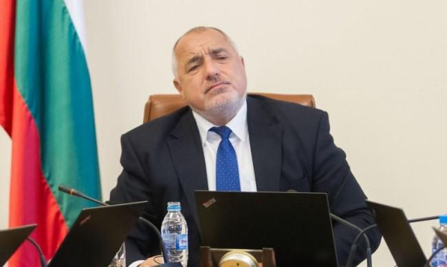 Лидерската битка Борисов и Нинова не в един, а в два района