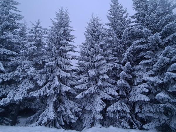 Днес през страната ще премине студен атмосферен фронт. Това съобщи