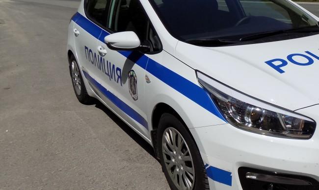 Полицията разкри оранжерия за марихуана във Варна
