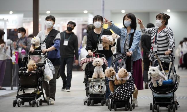 Затягат мерките в Токио, ситуацията с коронавируса се влошава