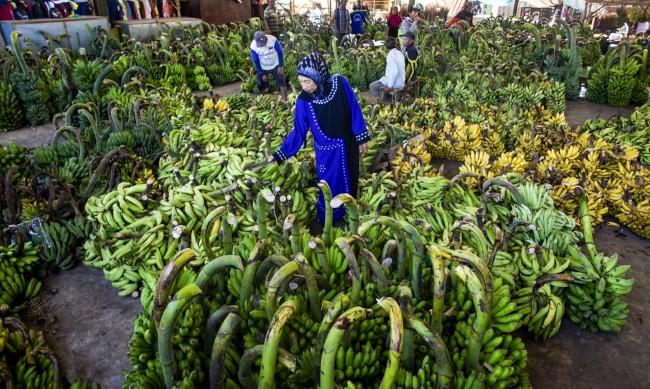 Сини банани с вкус на ванилия идват към пазара на Европа