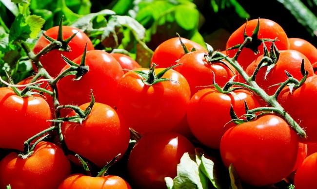 Заради пандемията растат разходите за събирането на реколтата