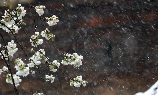 Идват валежи и гръмотевици – жълт код в общо 14 области в страната
