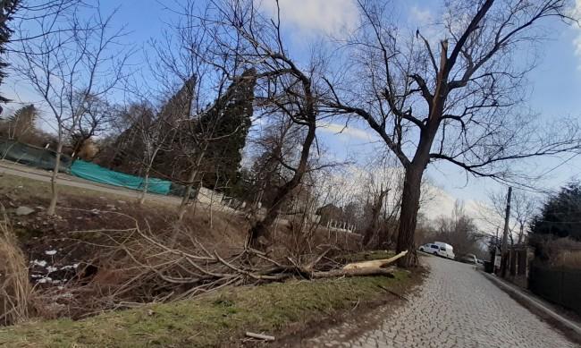 Helpbook: Паднали дървета, опасни кабели и шахти рискуват здравето на хора