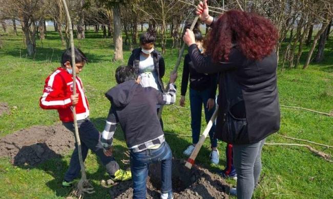 Деца засадиха над 200 дървета в Седмицата на гората