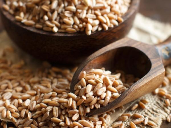 Спелта е зърнена култура, консумирана още от Древността. От нея