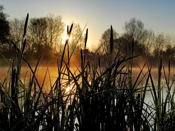 Очаква ни слънчева неделя. Сутринта ще е хладно и минималните