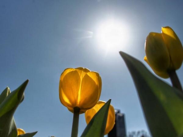 Денят ще започне с температури от 4 до 10 градуса.