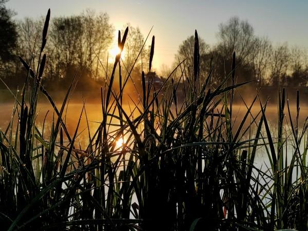 Днес ни очаква слънчево време, като минималните температури тази сутрин