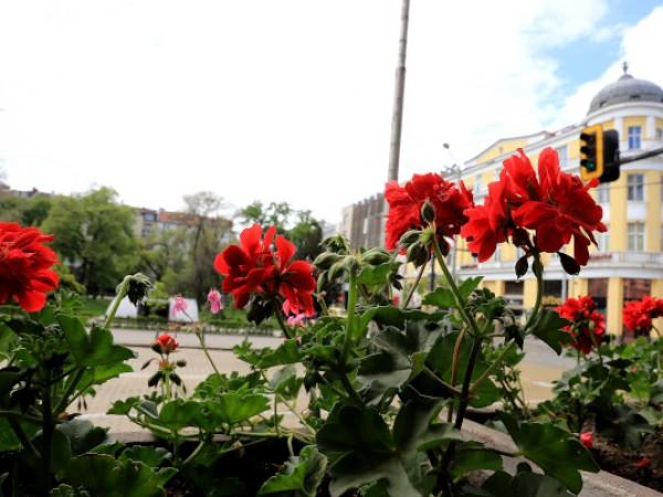 Вече 11 дни в България не е имало валежи. Месец