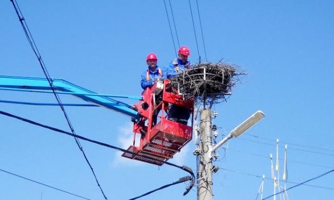 Сигнализират за стълбове със стърчащи жици до училище