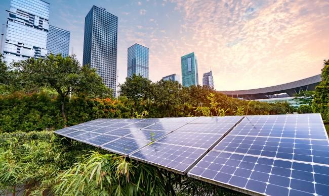 Как зеленото образование може да се материализира в зелен бизнес?