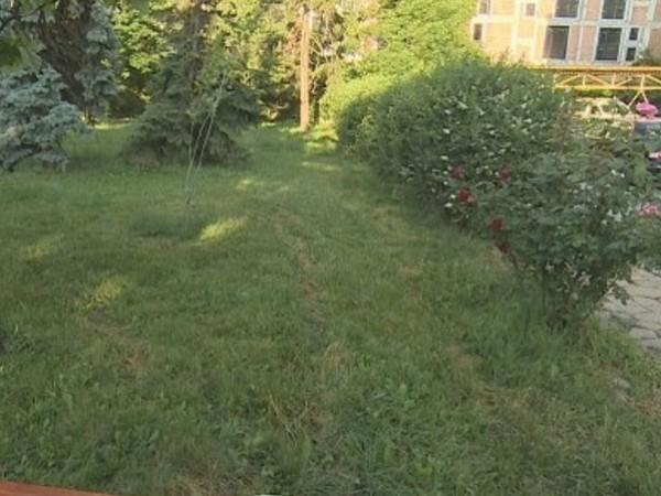 """Любопитен случай от столичния квартал """"Красно село"""": Глобиха доброволци, които"""