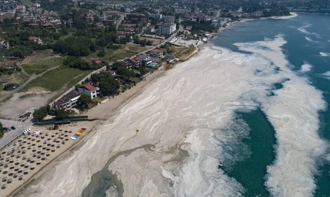 """""""Морски сополи"""" – опасна ли е слузта край бреговете на Мраморно море в Турция?"""