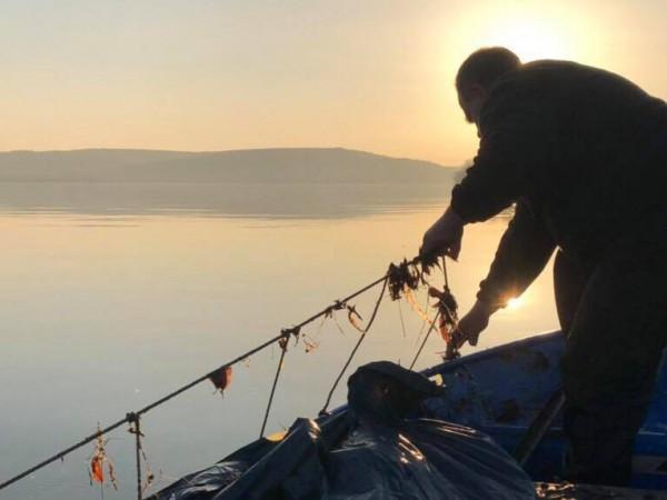 Близо 3 километра бракониерски мрежи са извадили от морето край